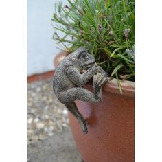 This Frog Pot Hanger will add a fun look to your plant pots. Suitable for indoors or outside, this hanger will fit on any plant pot, but. Pot Hanger, Wildlife, Plants, Gifts, Animals, Animales, Presents, Animaux, Flora