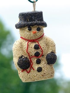 Outdoor Ornament: Birdseed Snowman http://www.hgtv.com/gardening/gardening-holiday-gift-guide/pictures/page-6.html?soc=pinterest