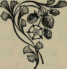 "Image from page 469 of ""Alas! : a novel"" (1890) 