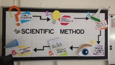Science bulletin board idea displaying the Scientific Method. Great visual reminder for students when learning about the scientific method. Science Lessons, Teaching Science, Science Education, Science Ideas, Physical Science, Student Teaching, Science Bulletin Boards, Science Boards, 8th Grade Science