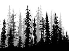 Tall Evergreen Forest in a silhouette illustration in black and white Forest Forearm Tattoo, Forest Tattoos, Nature Tattoos, Tree Silhouette Tattoo, Forest Silhouette, Tree Sleeve Tattoo, Sleeve Tattoos, Tree Line Tattoo, Olive Tree Bonsai