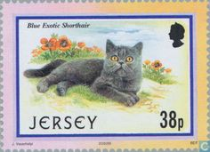 Postage Stamps - Jersey - Cats