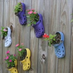 Croc garden... fun for kids when they outgrow them :)