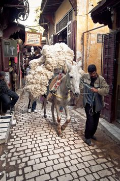 Carpet wool . Morocco