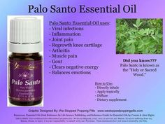 Palo Santo Essential Oil | Essential Oils | Pinterest