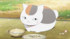 Madara_Nyanko-sensei_Natsume_Yuujinchou