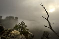 Almost creepy: Dense morning fog between the rocks of the Saxon Switzerland