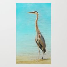 Wading - Blue Heron - Wildlife Area & Throw Rug by Jai Johnson - $28.00 Blue Heron, Throw Rugs, Wildlife, Bird, Animals, Animais, Animales, Animaux, Birds