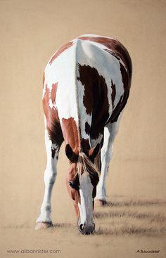 Indian War Horse | HIGH PLAINS INDIAN WAR HORSE - by ...