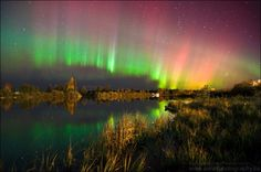 May 2019 - When It's Dark, I See the Lights! My biggest passion is the Northern Lights and Night Sky photography, the reason why many friends started calling me Aurora Dora. Northern Lights Viewing, Alaska Northern Lights, Moon Photography, Landscape Photography, Talkeetna Alaska, Aurora Forecast, Moon Hotel, Old Country Churches, Light Pollution