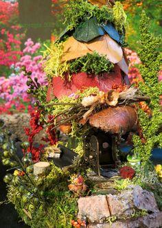Fairy House, Autumn, Fawna, Miniature House, Woodland Fairies, Faires