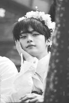 "𝐦𝐢𝐧𝐬𝐮𝐧𝐠 by bbubbuastro (ɢʀᴀᴄɪᴇ) with reads."" minho asked, his fingers tang. Lee Minho Stray Kids, Lee Know Stray Kids, Stray Kids Seungmin, Jooheon, Lee Min Ho, Idole, Kpop Boy, K Pop, Baby Photos"