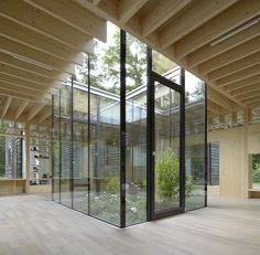 A Small woodland nursery in Germany