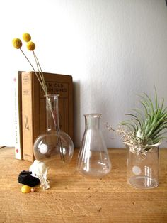 beaker vases with old math texts?