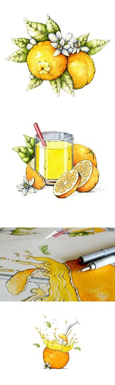 Oranges! on Behance