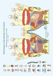 Картинки по запросу REFLEXOLOGY the Maps of Health Ewald Kliegel