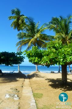 All time favorite place in the world #mountirvine #tobago