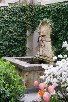 our courtyard fountain will be very similar to this. What should we plant on garage wall?