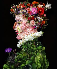 Made out of flowers and leaves, portrait of a gentleman by Klaus Enrique Gerdes inspired by Italian painter Arcimboldo l #photography