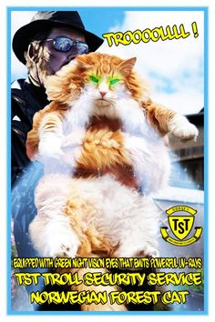 Equipped With Green Night Vision Eyes That Emits Powerful UV-Rays  TST Troll Security Service Norwegian Forest Cat  Watch out Mountain Kings TST Cat is on the Job !  Troooollll ! …
