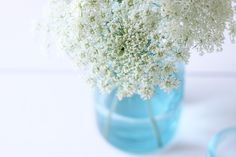 Aqua Blue jars and Queen Anne's Lace from Air Kiss