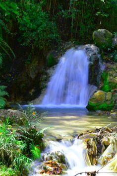 Parque la Tigra, Valle de Angeles, Honduras