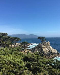 Missing California like craaaaazy and it's only been 2 days 😩 #montereylocals #pebblebeachlocals - posted by Sydra Smith https://www.instagram.com/sydra.smith - See more of Pebble Beach at http://pebblebeachlocals.com/