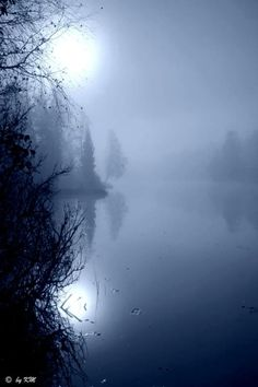 Misty Blue ~ by Kari Meijers, Winter, Norway / moonlight Beautiful World, Beautiful Places, Beautiful Pictures, All Nature, Amazing Nature, Imagen Natural, Photo Libre, Pics Art, Belle Photo