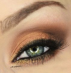 Golden/copper eye
