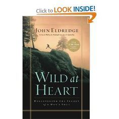 Wild at Heart: A book every man needs to read!