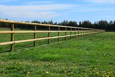 Clôture bois pour chevaux