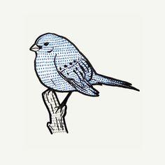 BIRD ART with indigo bunting
