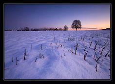 http://www.panoramio.com/photo_explorer
