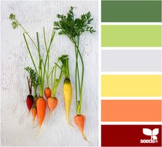 Click through to the source - AMAZING blog of all kinds of colors @Design Seeds