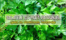 SUCUL de PĂTRUNJEL cu puțină LĂMÂIE te face ca nou - LaTAIFAS Parsley, Herbs, Salads, Herb, Medicinal Plants