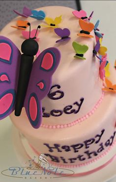 Colorful Butterfly Themed 6th Birthday