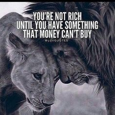 Wisdom Sayings & Quotes QUOTATION – Image : Quotes Of the day – Description You're not rich until you have something that money can't buy Sharing is Caring – Don't forget to share this quote with those Who Matter ! Positive Quotes, Motivational Quotes, Inspirational Quotes, Positive Mind, Positive Attitude, Positive Vibes, Citation Lion, Lion Quotes, Tiger Quotes