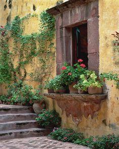 to San Miguel de Allende, Mexico.