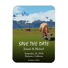 #country - #VIntage Switzerland alps cows Save the Date Magnet