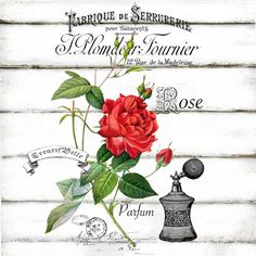 French Vintage Rose Perfume Label Large A4 Instant by CreatifBelle