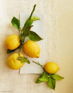 Pucker Up! Lemon Tarts - House Of Brinson