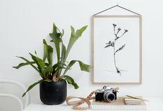 SEPTEMBER FLOWERS BY RK DESIGN