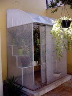 Tenha uma estufa em casa - Verde em Folha