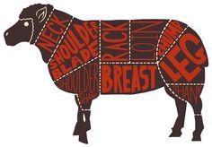 Morrisons Meat Cut Charts - Ben Newman Illustration