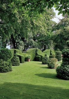 Irish yew topiaries at an English countryside estate where Plum Sykes visited for a horseback-riding trip.   Photographed by François Halard, Vogue, November 2014.