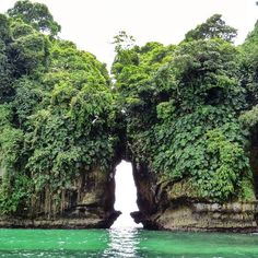 """""""Bird island (isla de pajaro) was unlike the other islands in Bocas Del Toro. You go out on a boat to what seems like the middle of the ocean and all of a…"""""""