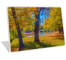 Autumn at the Malmsbury Reserve Laptop Skin