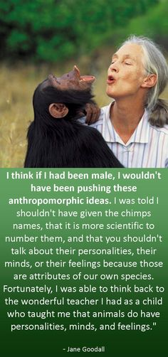 #inspiration from trailblazer Jane Goodall, the world's foremost expert on chimpanzees and a #workingwoman who has broken all kinds of barriers!