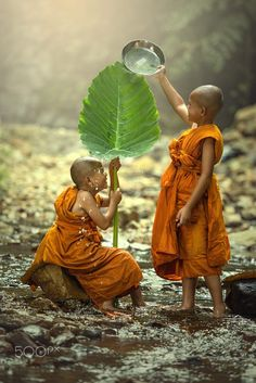 The novice two were water play in the creek. Little monks of Buddhism. Precious Children, Beautiful Children, Cool Photos, Beautiful Pictures, Little Buddha, Buddhist Monk, World Cultures, People Around The World, Belle Photo