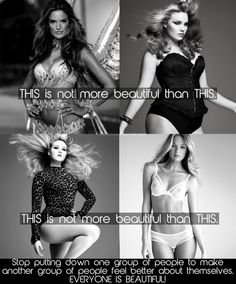 I can't stand the anti-feminist idea women have, all over Pinterest, that it's OK to put down one group over another due to insecurities. Plus sized women are beautiful, skinny women are beautiful, and average women are beautiful.